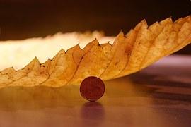 紅葉とコイン